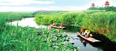 河北安新·白洋淀:绿盈洼淀